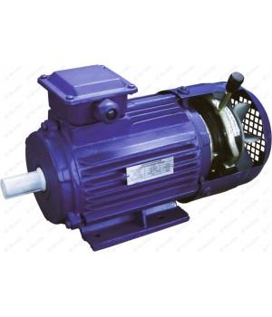 Электродвигатель с тормозом 5АИ 56 А2 ЕD (ЕТ, ЕТ1, ЕD1, ЕD2) - Лапы (1001/1081)