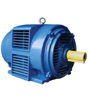 Электродвигатель IP23 5АИН 280 М4 - Лапы (1001/1081)
