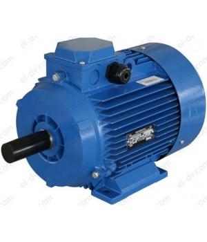 Рудничный электродвигатель АИМУР 63 А2 380В - Лапы (1001/1081)
