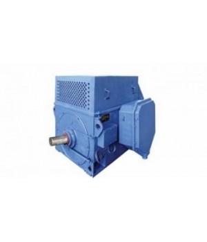Электродвигатель высоковольтный ДАЗО4-400Х-6У1 - Лапы (1001)