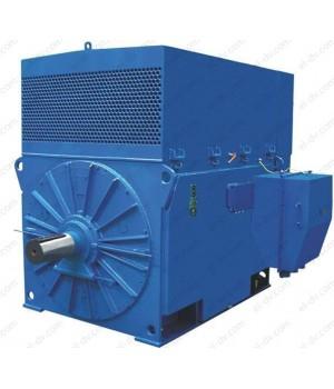 Электродвигатель высоковольтный ДАЗО4-450Х-8У1 - Лапы (1001)