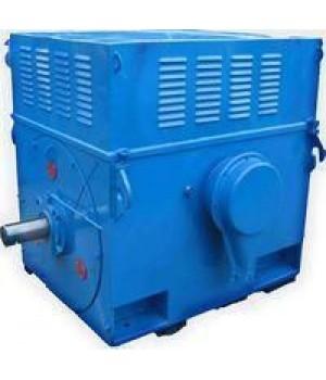 Электродвигатель высоковольтный ДАЗО4-450У-10У1 - Лапы (1001)