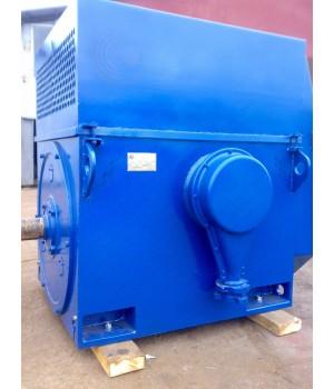 Электродвигатель высоковольтный ДАЗО4-450УК-8У1 - Лапы (1001)