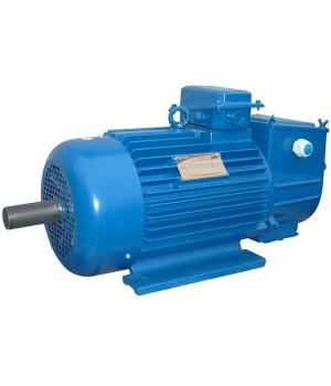 Крановый электродвигатель с фазным ротором 5МТН 225 L8 - Лапы (1003)