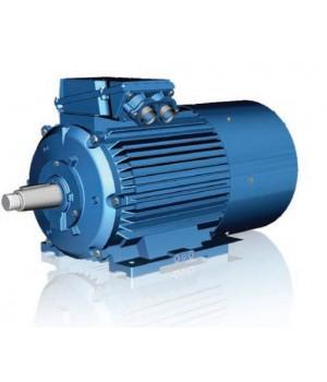 Крановый электродвигатель с фазным ротором 5МТН 411-6 - Лапы (1003)