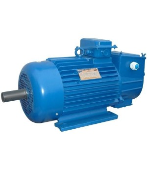 Крановый электродвигатель с фазным ротором 5МТН 411-8 - Лапы (1003)