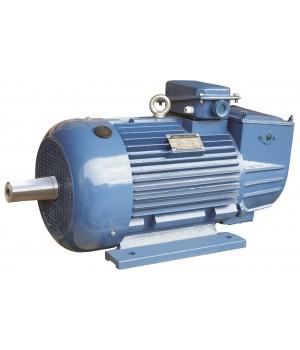 Крановый электродвигатель с фазным ротором 5МТН 412-6 - Лапы (1003)