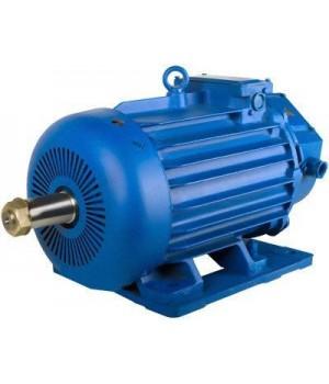 Крановый электродвигатель с фазным ротором 5МТН 511-6 - Лапы (1003)
