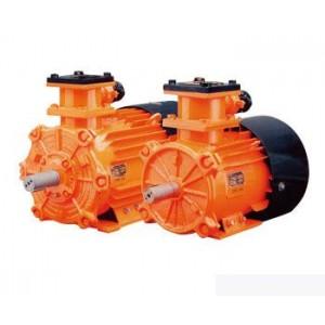 Рудничные (взрывозащищенные) электродвигатели
