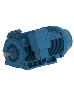 HGF 185 kW 6P 315C/D/E 3Ph 6600 V 50 Hz IC411 - TEFC - B3R(E)