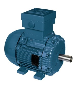 220/380 V 50 Hz 2P - W21 Flameproof Motor 0.55 kW IC411 - TEFC - B3T