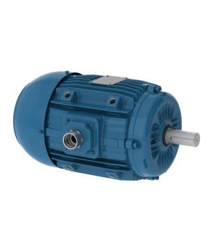 220/380 V 50 Hz 4P - W22 Fan and Exhaust IE1 0.25 kW IC411 - TEFC - B30L(D)