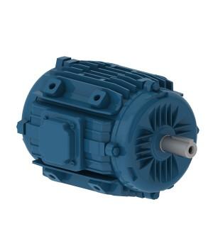 220/380 V 50 Hz 2P - W22 Fan and Exhaust IE2 0.25 kW IC410 - TEAO - B30L(D)