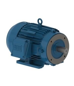 208-230/460 V 60 Hz 2P - W22 High Efficiency 1 HP IC411 - TEFC - Foot-mounted