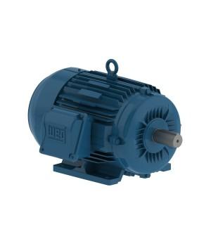 208-230/460 V 60 Hz 2P - W22 NEMA Premium Efficiency 1 HP IC411 - TEFC - Foot-mounted