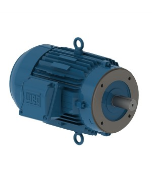 208-230/460 V 60 Hz 2P - W22 NEMA Premium Efficiency 1 HP IC411 - TEFC - Footless