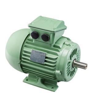 Wquattro 1.5 kW 6P 100L 3Ph 230/400 V 50 Hz IC411 - TEFC - B3T